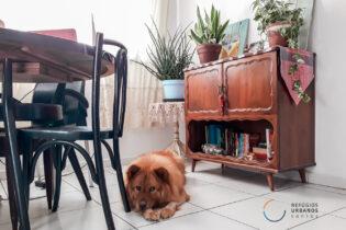 Na Encruzilhada, em rua tranquila com ares de interior, 82 m², sala com cozinha estilo americano, 2 quartos, 1 banheiro e mais dependência